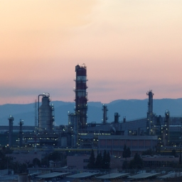 The Petrochemical Complex as a Unit of Reference in Considering Companies' Relationships with the Local Community