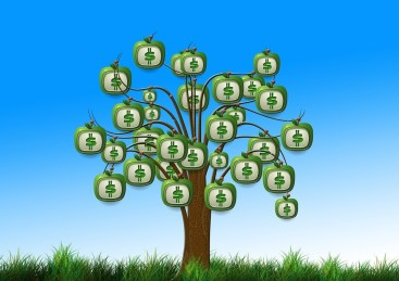 green money tree