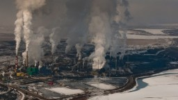 Editorial: The Unbearable Toxic Cost