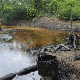 The Elusive Search for Environmental Justice: What We Can Learn from the Efforts of Indigenous Plaintiffs to Hold Chevron Accountable for Its Destructive Legacy in Ecuador