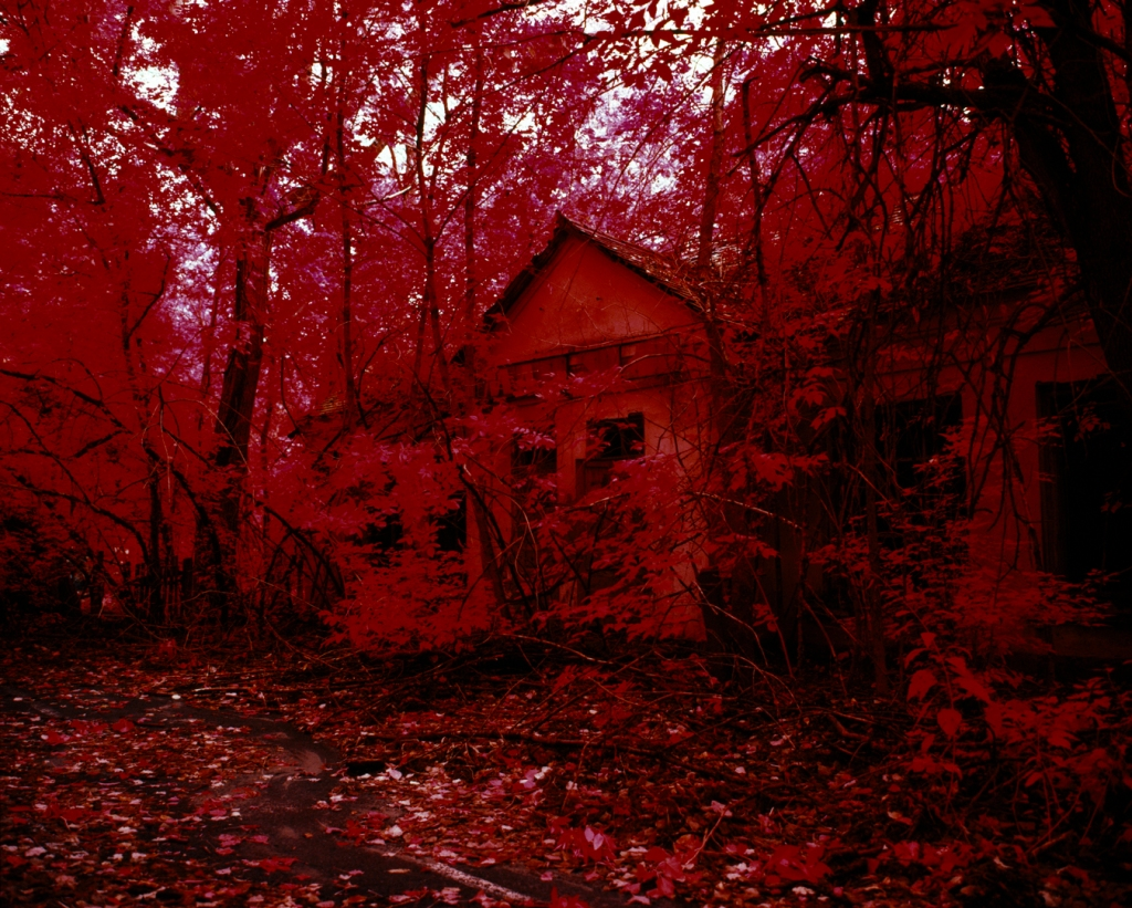 The Red Forest - From the Invisible series.