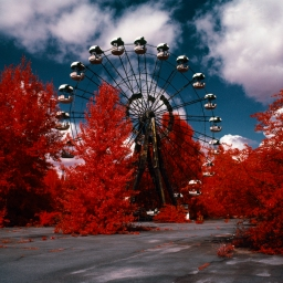The Red Forest: Picturing Radiation with Infrared Film