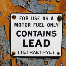 Deadly Exposures: COVID-19 and the Slow Violence of Lead Exposure